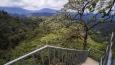 Mashpi Cloud Forest 26m tall observation tower, Choco Rainforest, Ecuador, South America