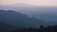 Misty Choco Forest at sunset, a rainforest in the Pichincha Province of Ecuador