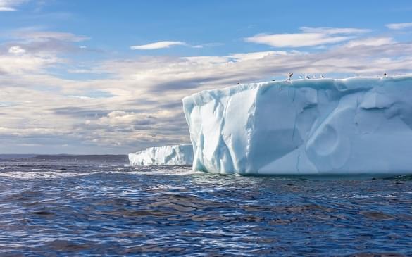 1061_AntarcticaSilverExplorer_20160727