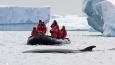 1067_AntarcticaSilverExplorer_20110805