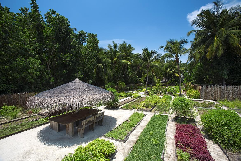 1215_GiliLankanfushi_20160502