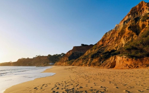 BerkeleyTravel-PineCliffs_0515