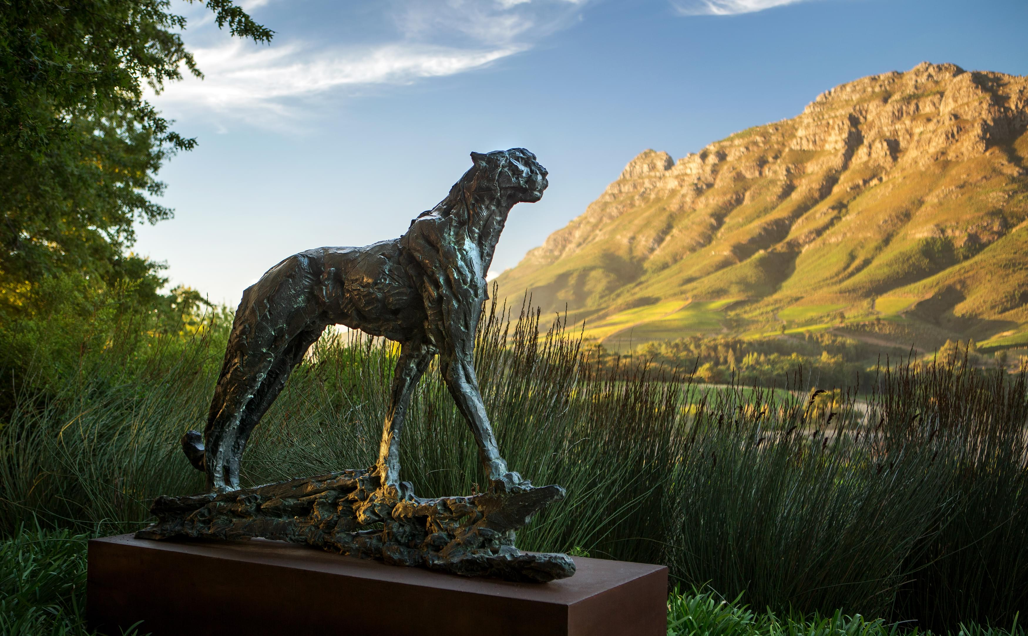Delaire Graff South Africa