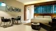 CUNPC_P025 Hyatt King Guestroom